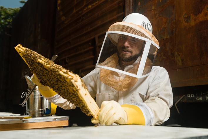 Noah Wilson-Rich of Boston's Best Bees