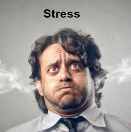 Stress Issues