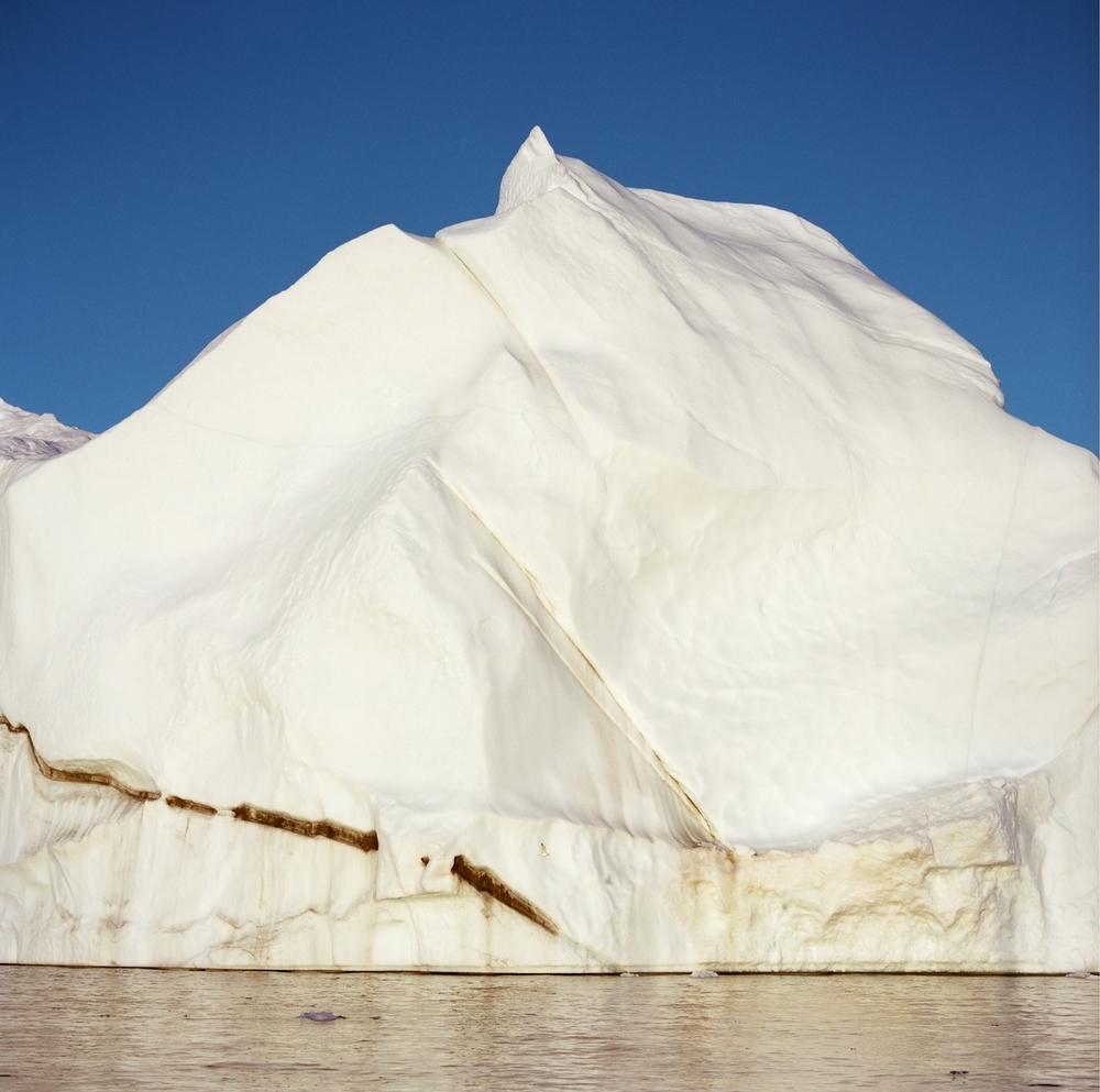 iceberg w. bird-print8x8.jpg