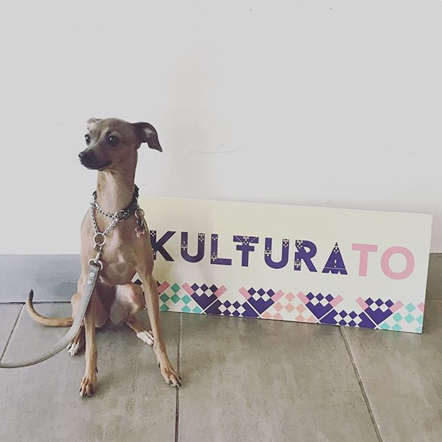 Happy Monday! #kulturaTO is for everyone, even our furry friends 🐶 #filipinx #filipino #filipina #torontoarts #toronto #arts #culture #kapisanan #festival #torontofestival #filipinofestival #filipinoyouth #youth #torontoyouth #puppiesofinstagram #dogsofinstagram #italiangreyhound
