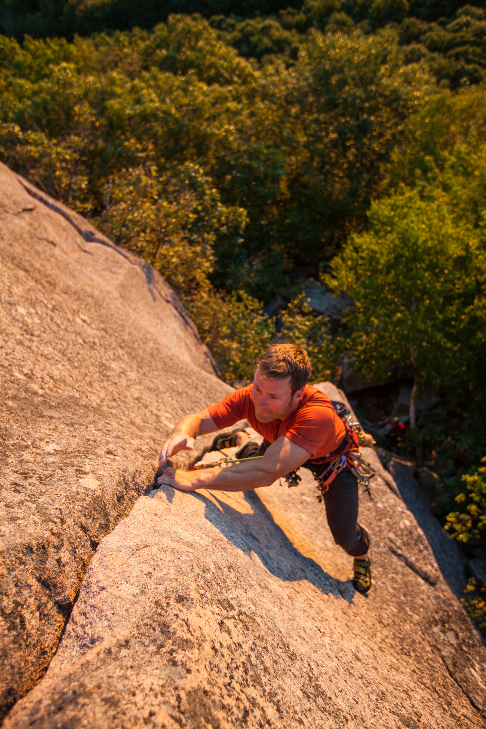 Owen Cassidy on Bartleby (5.8).