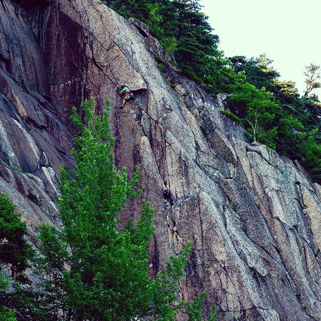 The South Wall in all its summer glory.  Owen Cassidy launching out into The Wet Lithuanian (5.10b). #rockclimbsofacadia #acadianationalpark #climbing_pictures_of_Instagram