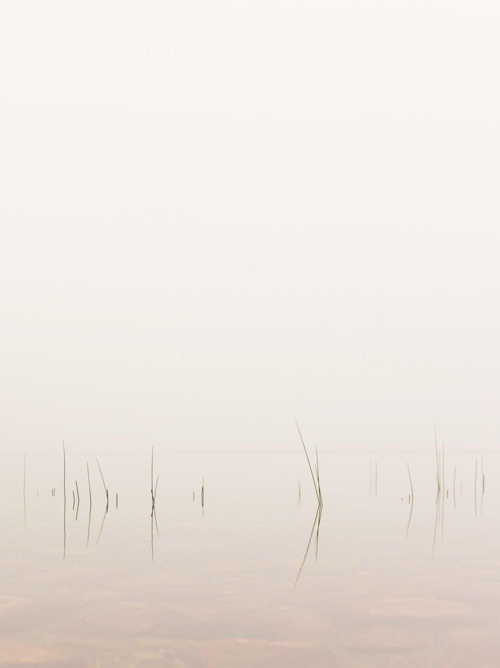 Shot by  Ben Schuyler
