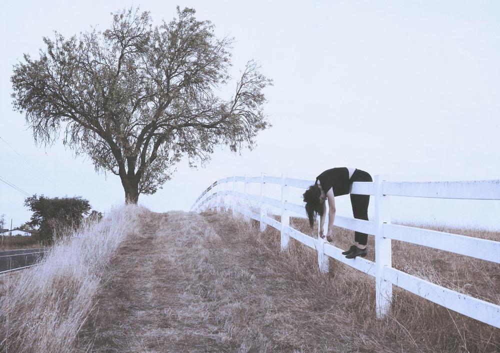 FR_manav_2_fence.jpg