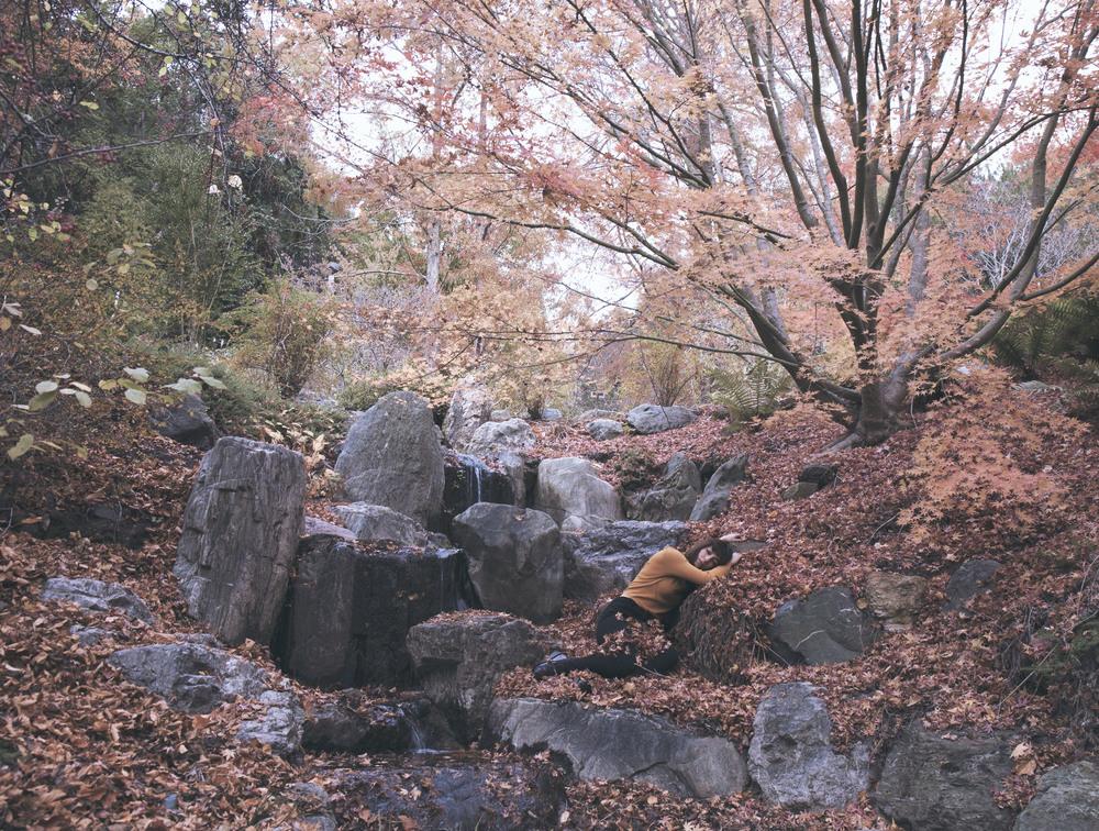 FR_manav_1_japanesegarden.jpg