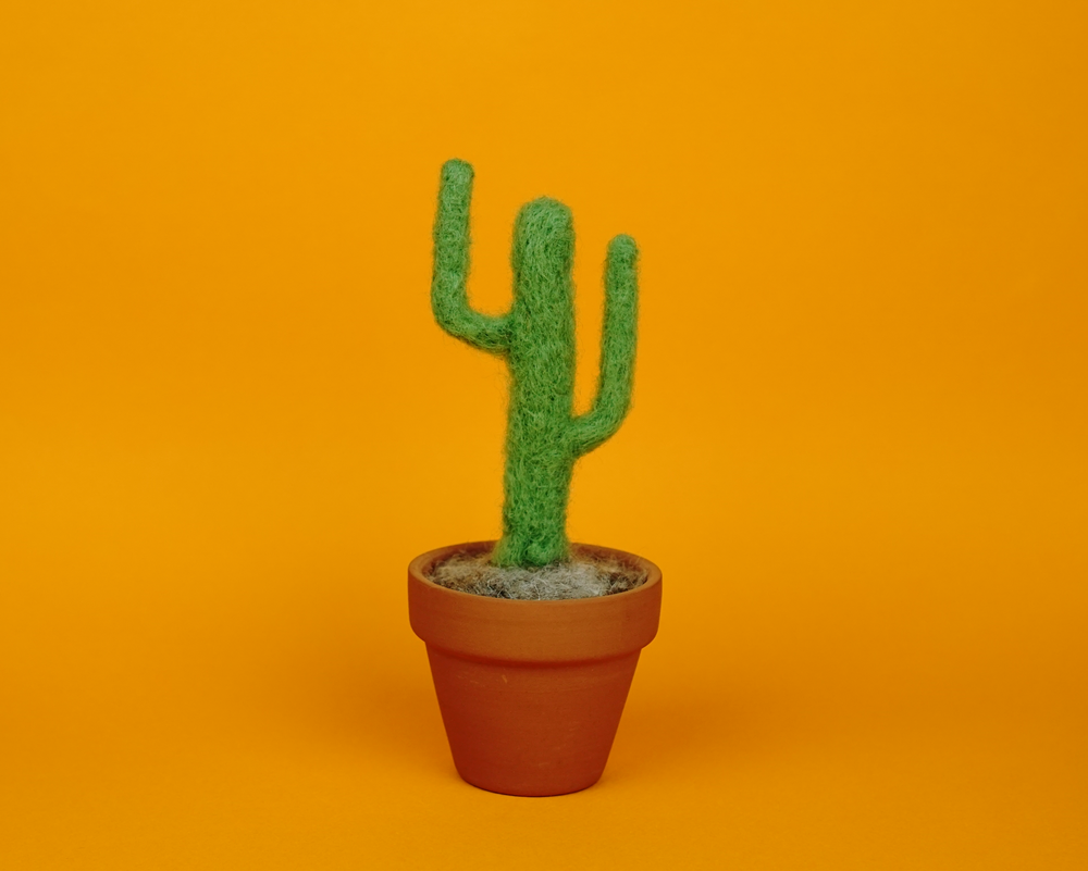 Cactus on Mustard, 2018.  Felted wool and wire.