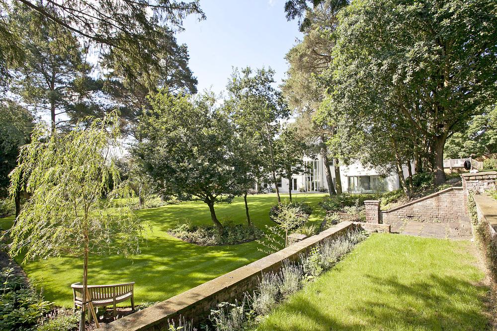 Garden and trees.jpg