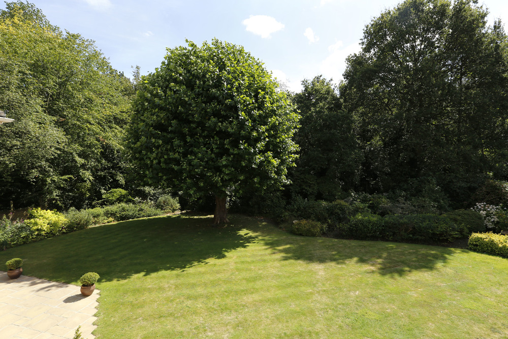 Coombe Ridings 11 - Gdn view.jpg