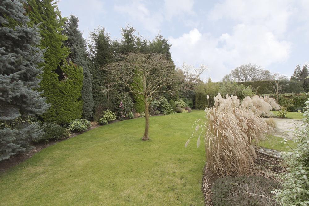 Caron - garden.jpg