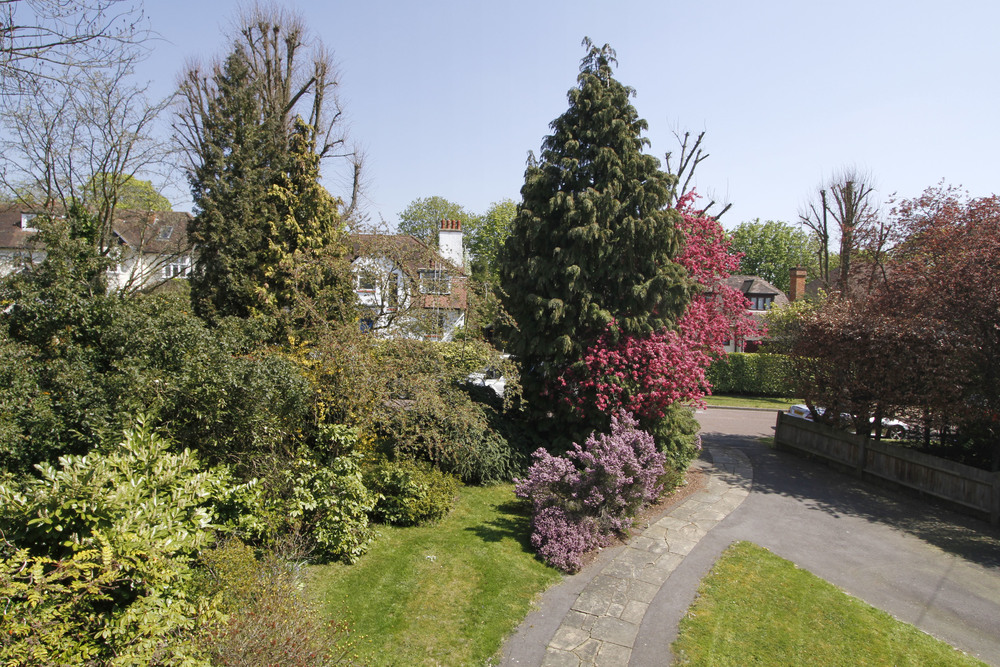 Brook Gdns 5 - Fr Gdn.jpg