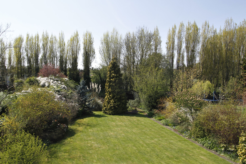 Brook Gdns 5 - Gdn view.jpg