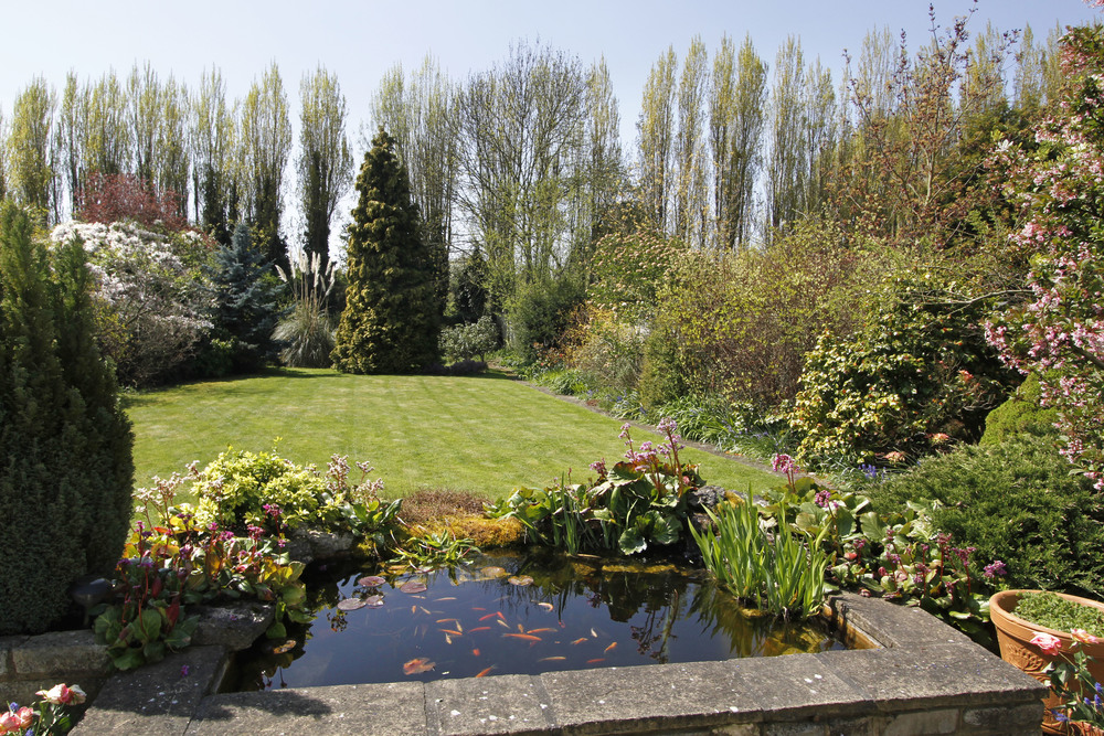 Brook Gdns 5 - Pond.jpg