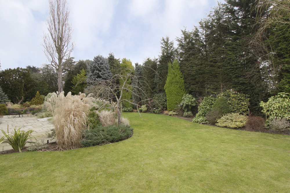 Caron - garden wide.jpg