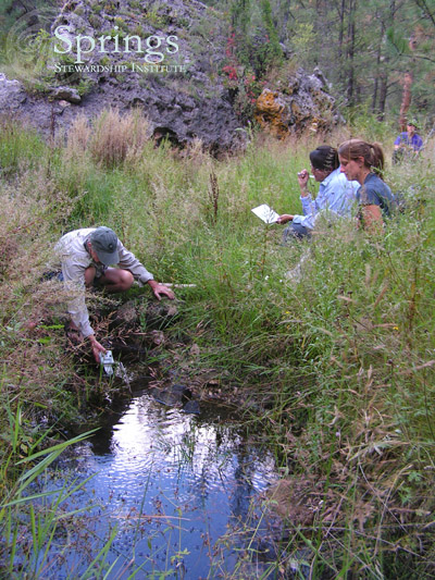 Fig. 1: Survey of Lockwood Spring, Coconino National Forest, Arizona
