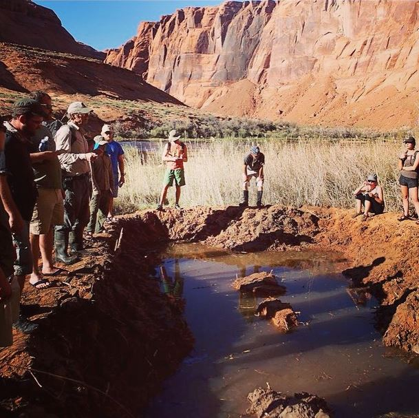 Dr. Larry Stevens and students of Prescott College conducting restoration work at Leopard Frog Marsh as part of an ongoing rehabilitation project with the Grand Canyon Wildlands Council.