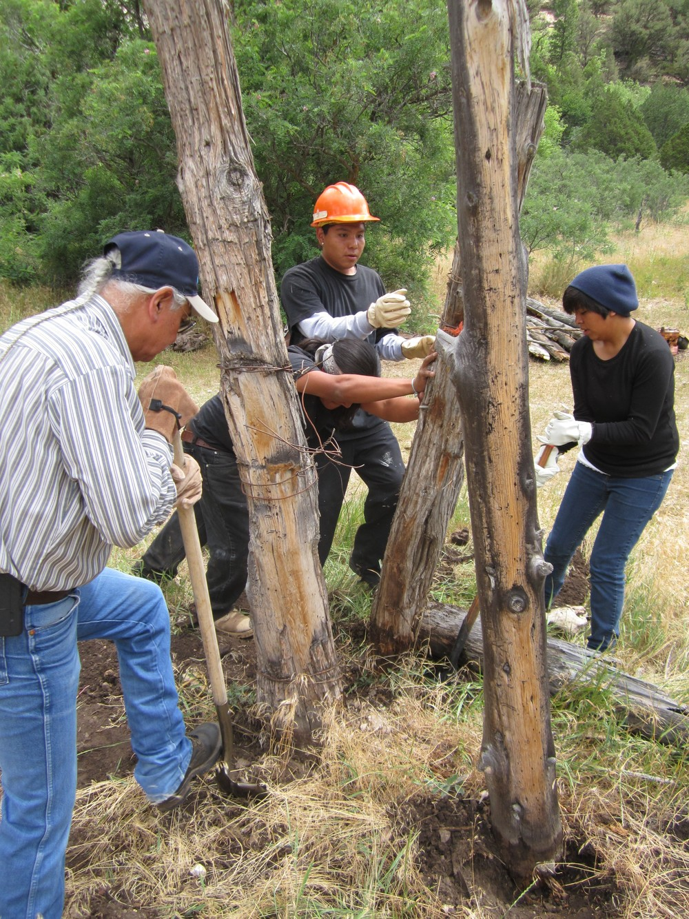 Volunteers removing decrepit fence posts during the rehabilitation of Castle Springs in Kaibab National Forest.