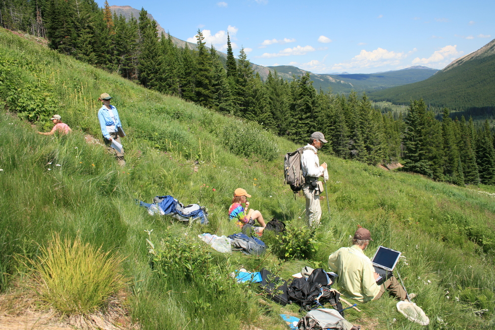 Ms. Jeri Ledbetter and Dr. Larry Stevens surveying Jellyroll Springs in Alberta, Canada with researchers from the University of Lethbridge, and in collaboration with Dr. Abe Springer of Northern Arizona University.