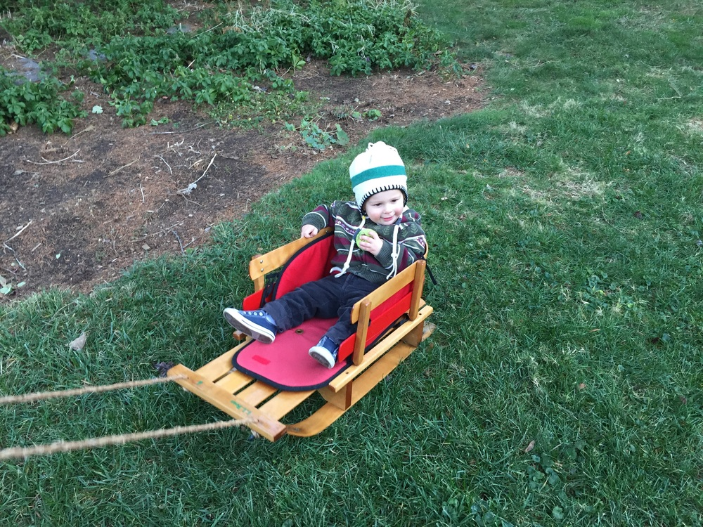 No snow yet, but he is still enjoying his newly refurbished sled, thanks to his Pappy!