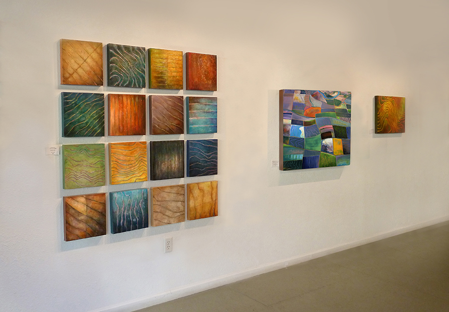 Fields of Light , Solomon Dubnick Gallery, 2008