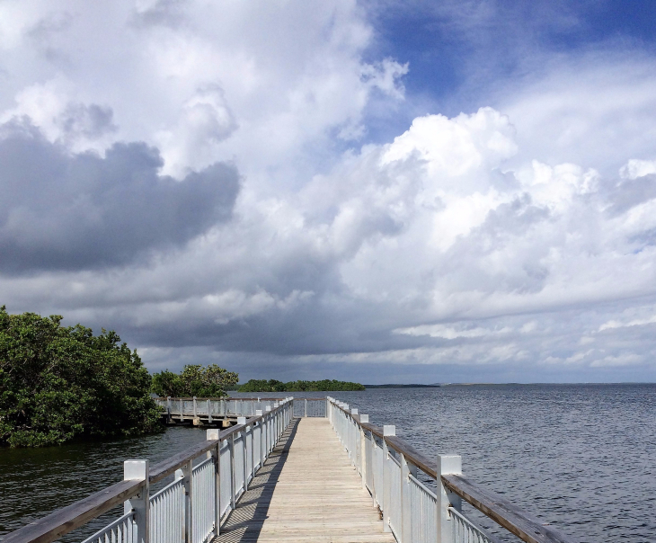 THE BOARDWALK ADJACENT TO BISCAYNE'S VISITOR CENTER WEAVES IN AND OUT OF MANGROVE STANDS.