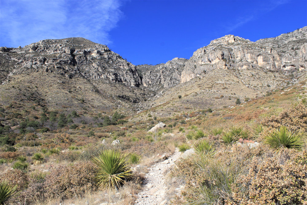 Hiking into McKittrick Canyon. There are 1,434 rattlesnakes in this photo