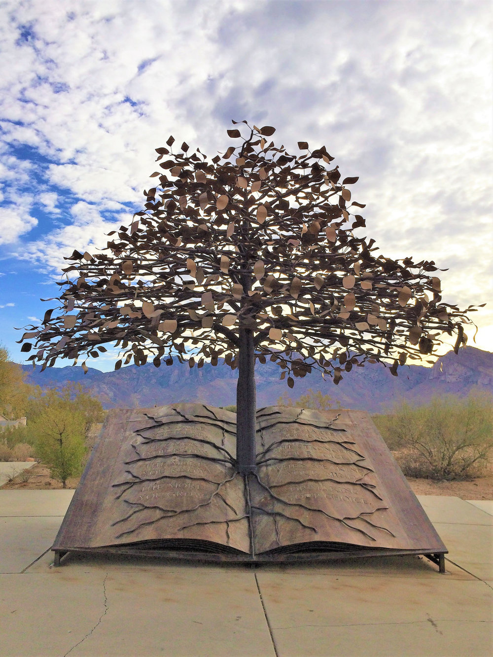 Beautiful metal sculpture outside the Oro Valley library – my home for several days.