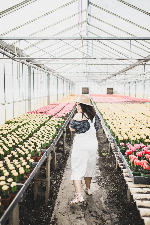 Plants-12.jpg