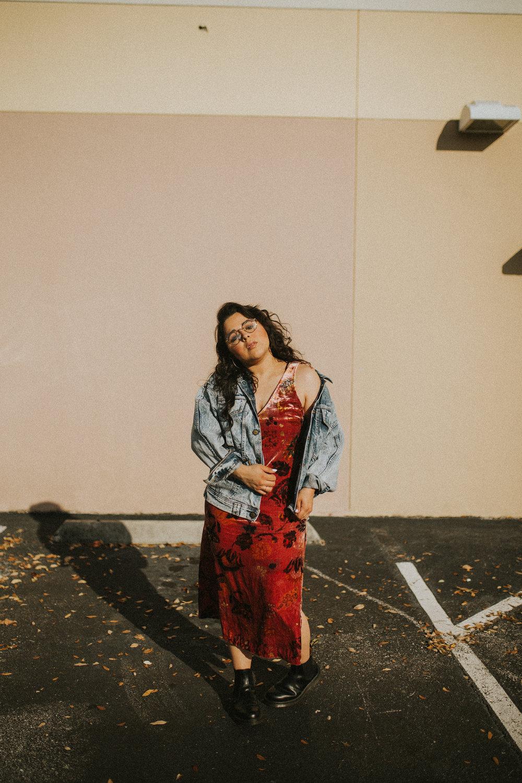 Velvet Dress-1.jpg