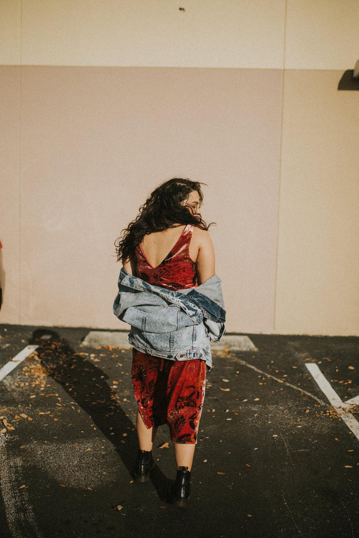 Velvet Dress-8.jpg