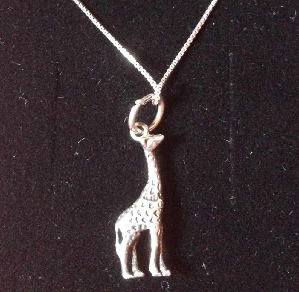 The giraffe necklace Reece gives Coley for Christmas.