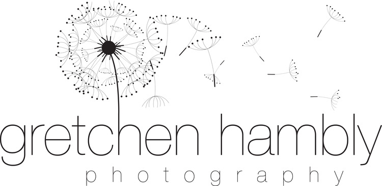 gretchen hambly photography
