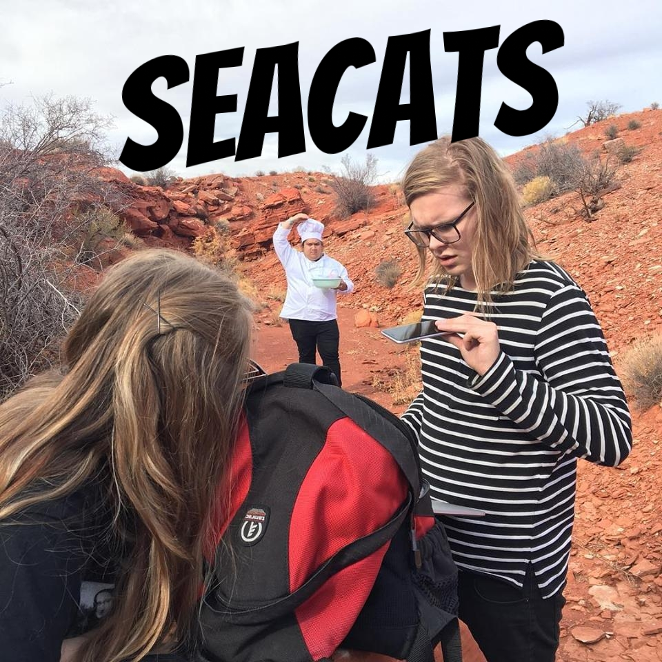 SEACATS