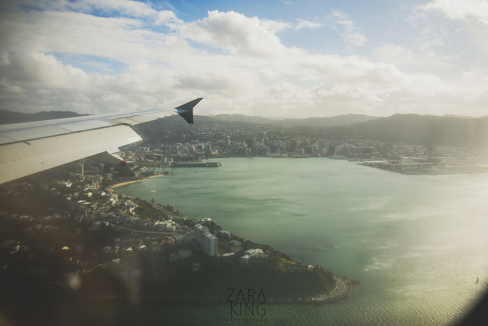 It was a perfect flight into Wellington (practically unheard of, thanks to the winds)