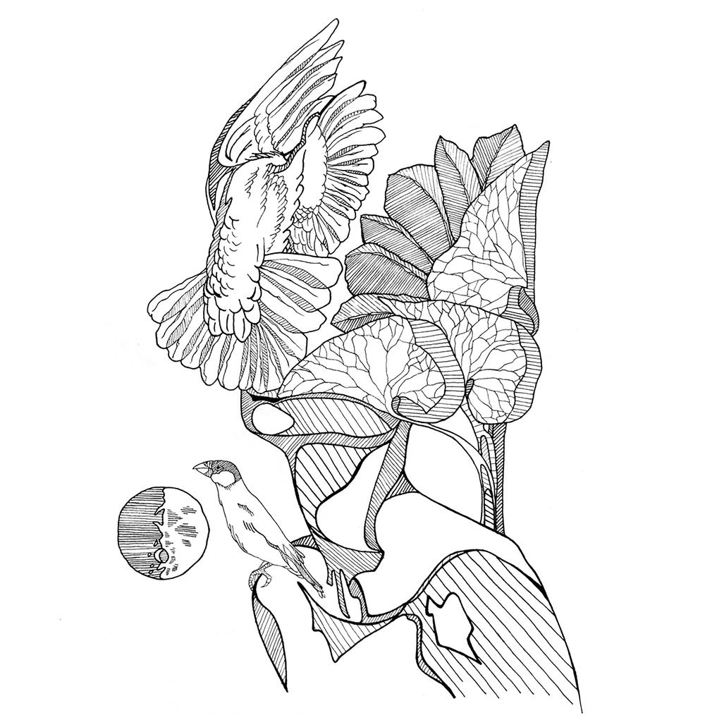 cnpc-dreamflow-illustration.jpg