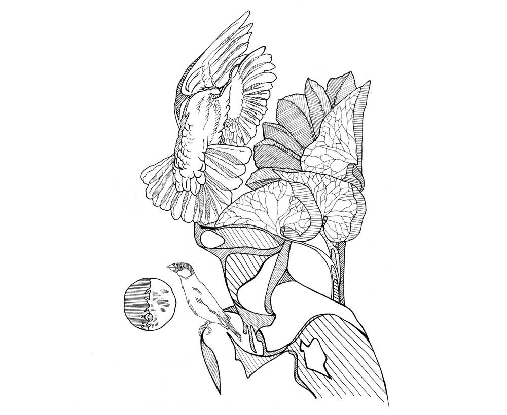 original-dreamflow-illustration.jpg