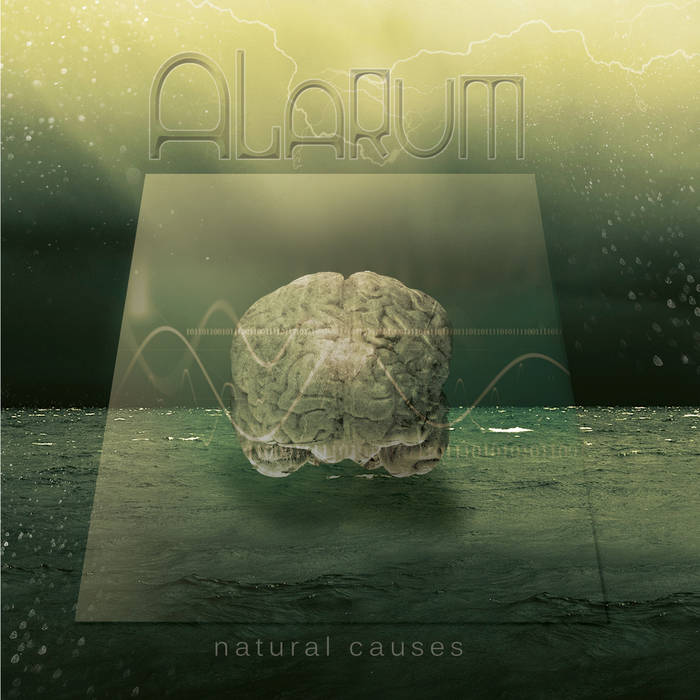 "Alarum - ""Natural Causes"" (2011)    Facebook     Spotify"