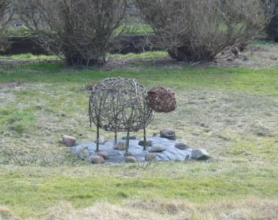 Strange sheep in an Iona garden