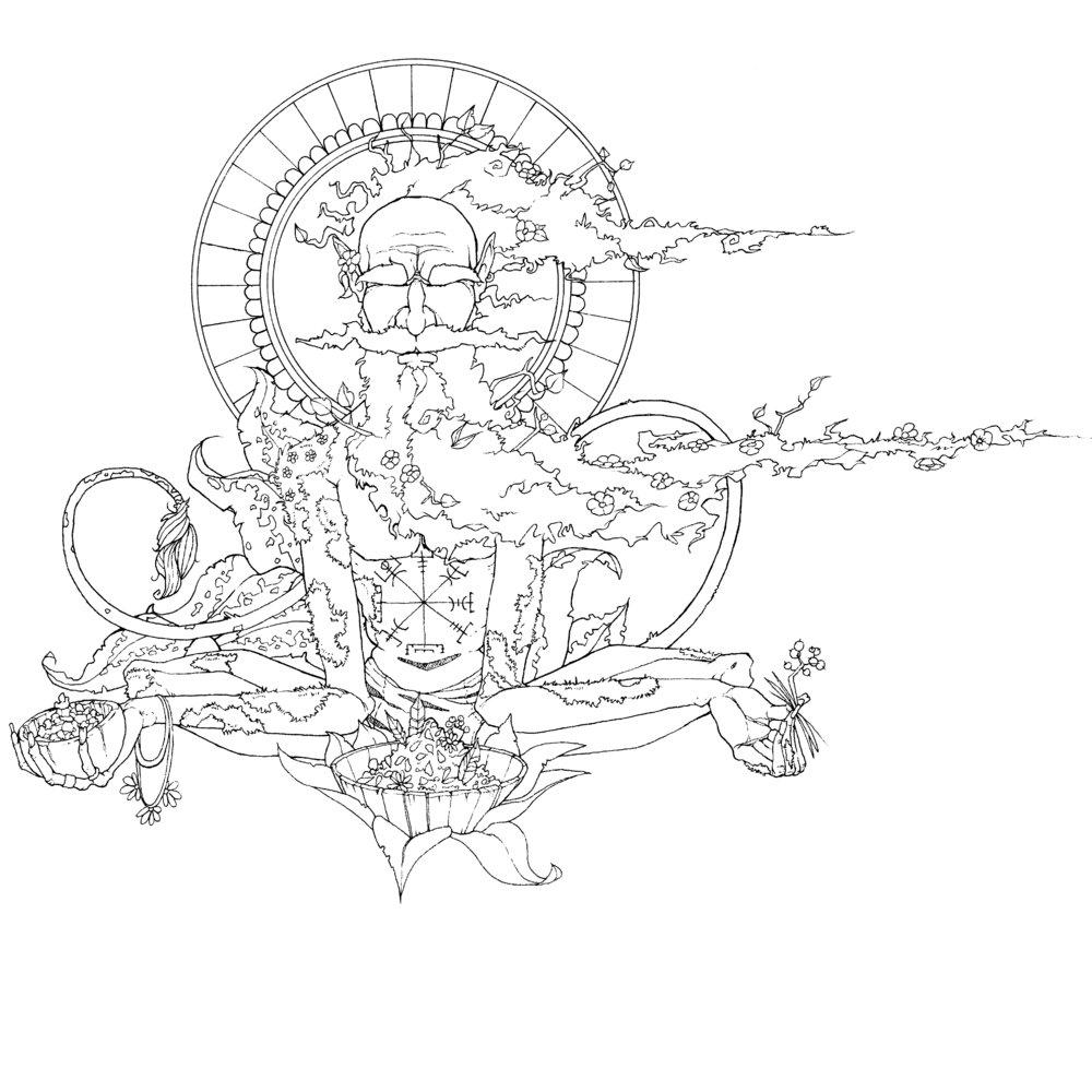 Ikke Senja-trollet, men Zen-trollet fra nord. Davids strek er både leken og elegant.