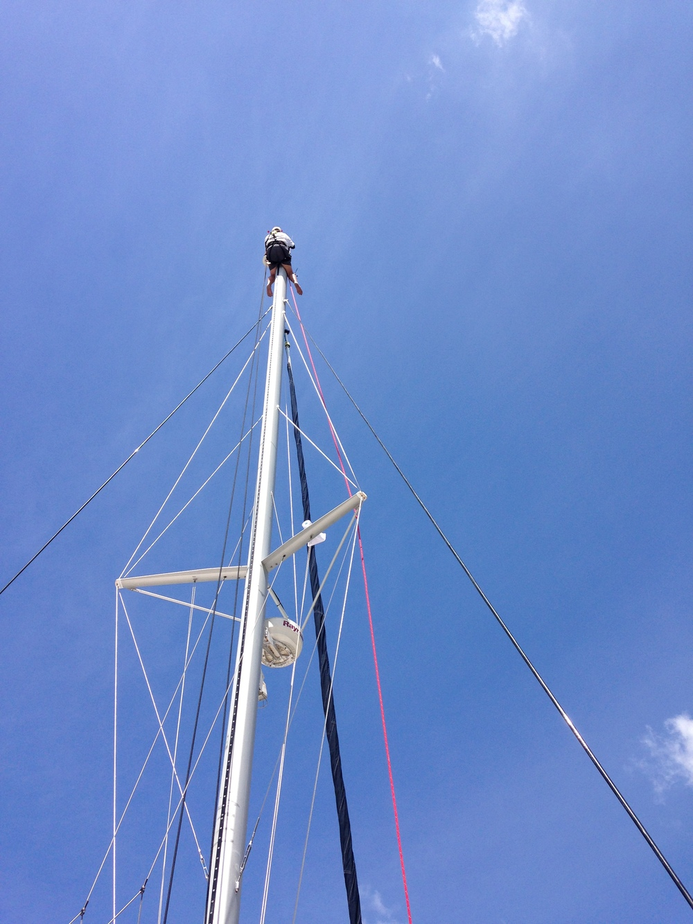 Pete up mast.JPG