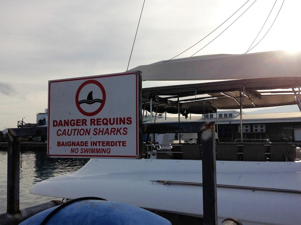 shark sign.JPG