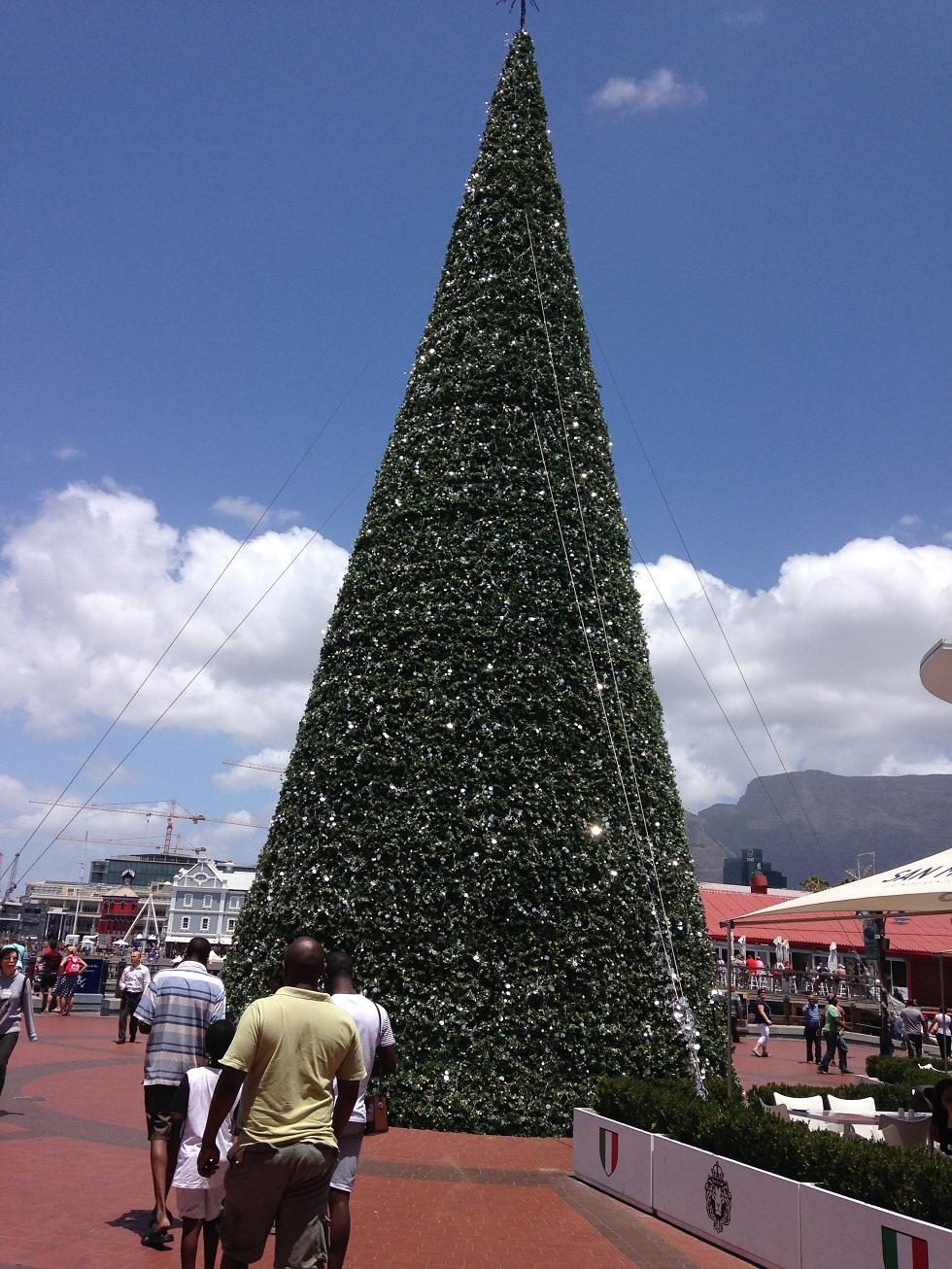 X tree.JPG