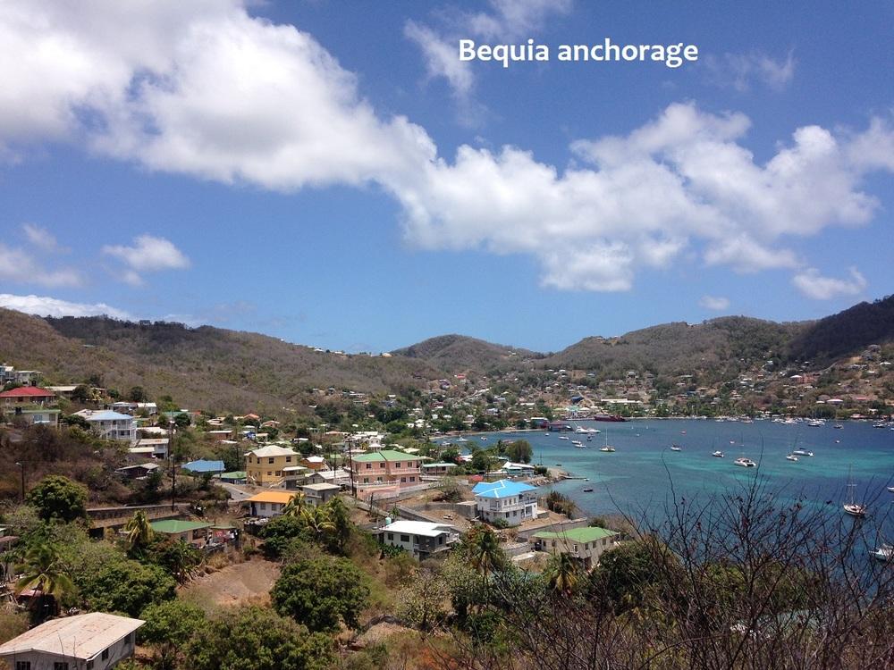 Bequia anchorage.JPG