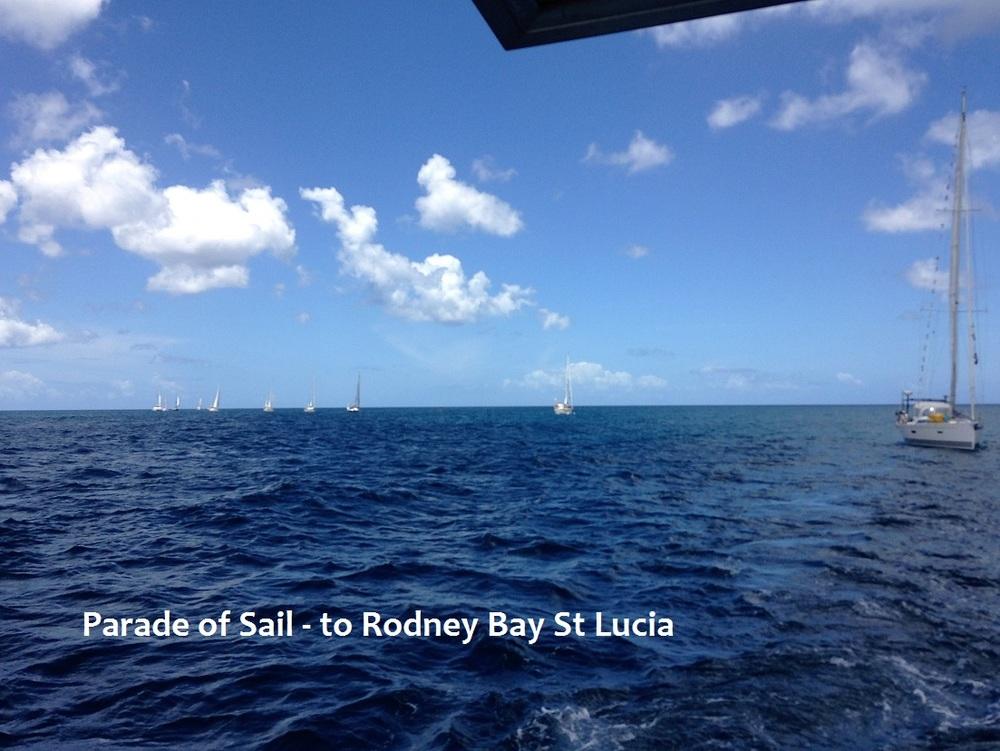 parade of sail.JPG