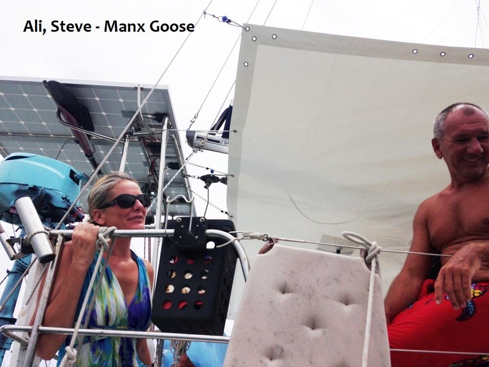 Manx Goose.JPG