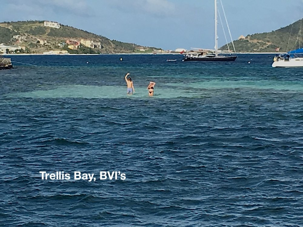 Trellsi bay S and D.JPG
