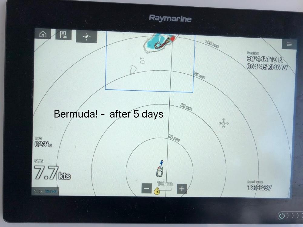 Bermuda Raymarine.jpg