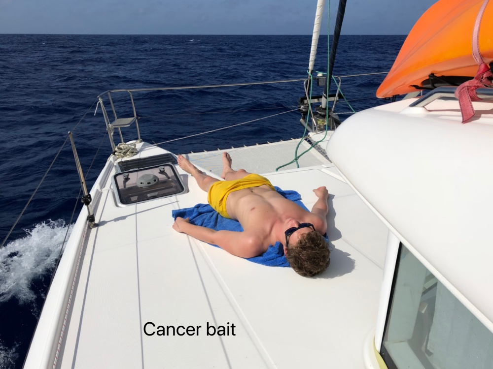 cancer bait.jpg