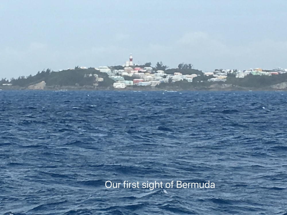 Bermuda first sight.jpg