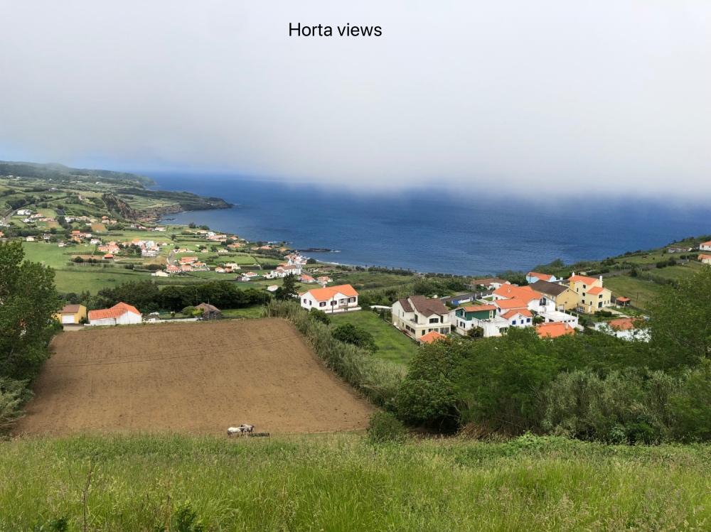 Horta views.jpg