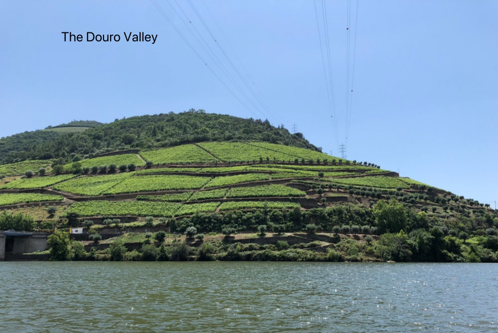 Douro Valley.jpg